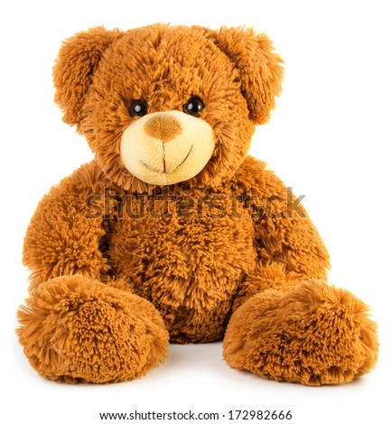 Toy teddy bear isolated on white background - stock photo