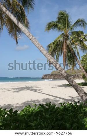 Trabaud beach, Martinique - stock photo