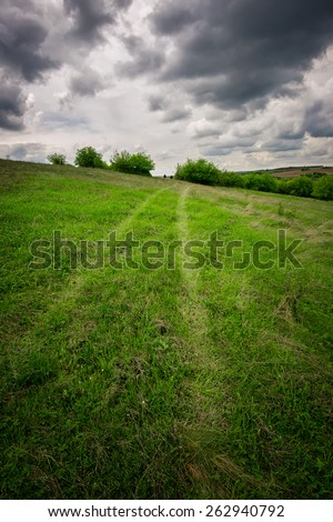 Traces of a car on a green meadow - stock photo