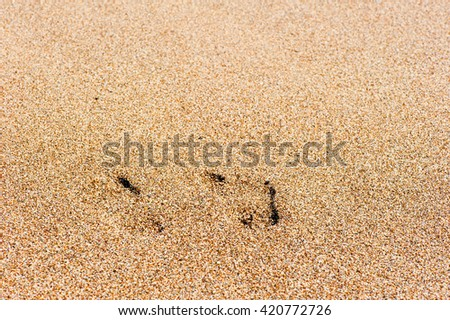 Traces of human feet in the sand beach - stock photo