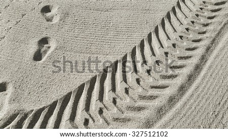 Traces of the car a man and a bird on the morning beach sand - stock photo