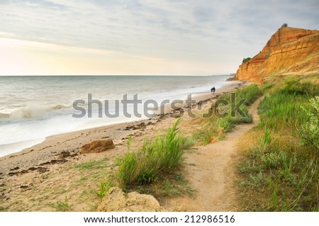 Traces on th sea shore. Nature composition. - stock photo