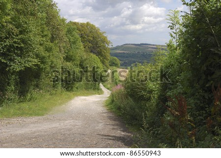 Track through South Downs Countryside near to Arundel in West Sussex. England.