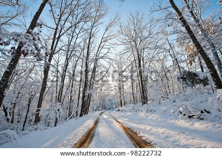 Tracks Through Snowy Road - stock photo