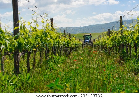 Tractor in the vineyard - stock photo