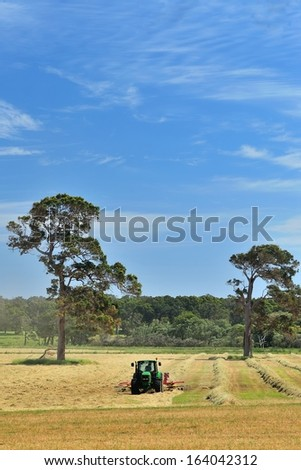 tractor making windrows of hay on australian farm - stock photo