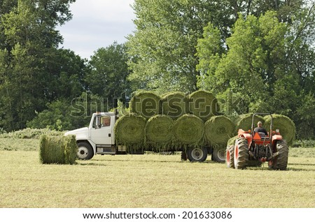 Tractor picking up large round bales of high value alfalfa grass feed  and putting on a truck to ship to the barn from a summer field in Oregon - stock photo
