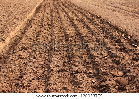 Tractor plowing a furrow for planting