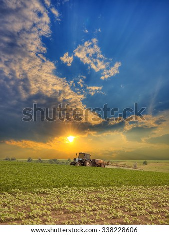 Tractor spraying the field on sunset in summer - stock photo
