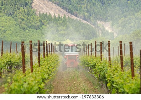 tractor using a air dust machine sprayer with a chemical insecticide, sulfur, or fungicide in the vineyard of wine grape vines in Oregon - stock photo