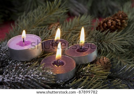 traditional advent candles three purple and one pink on a fir branch - stock photo