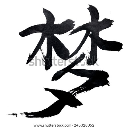 Traditional Chinese Calligraphy Dream Isolated On Stock Photo