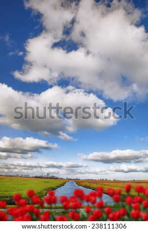 Traditional Dutch landscape  in  Zaanse Schans, Amsterdam area, Holland - stock photo