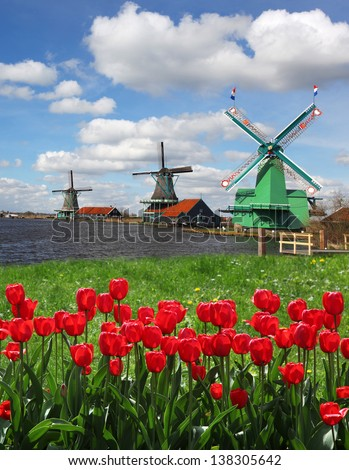 Traditional Dutch windmills with red tulips close the Amsterdam, Holland - stock photo