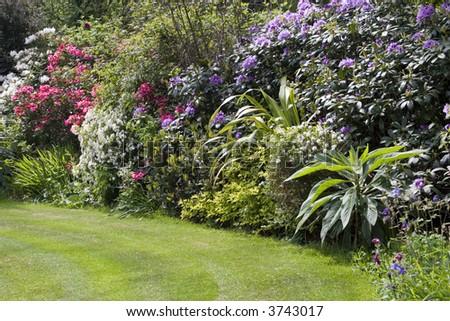 Traditional English garden - stock photo