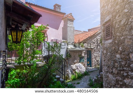 Traditional European Mediterranean architectural style in the streets and houses, porches, stairs, shutters in the noon sunbeam, surrounded by vine, hydrangea and palm at summertime Vrbnik