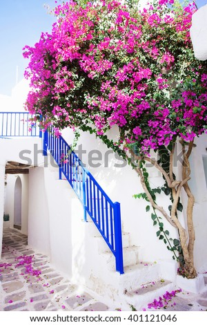 Traditional greek house with flowers,Paros island, Greece - stock photo