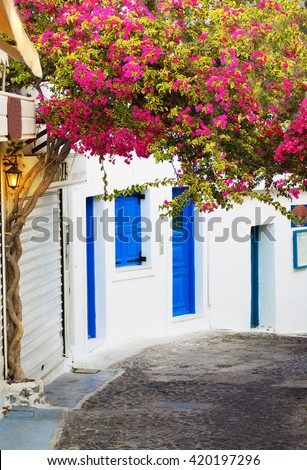 Traditional Greek street with white houses and blue windows and blooming pink tree in Santorini Island. - stock photo