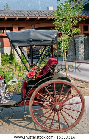 Traditional horse drawn carriage details