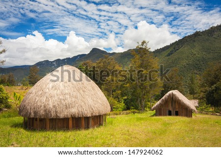Traditional huts Papuans in Wamena, Papua New Guinea Island, Indonesia - stock photo