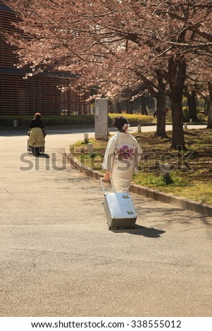 Traditional Japanese Woman - stock photo