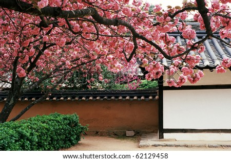 Traditional Korean house with flowers
