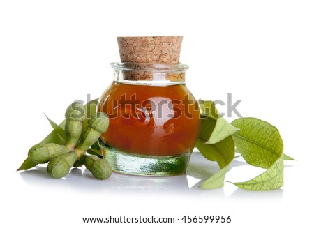 Traditional medicine: Eucalyptus essential oil bottle with leaves and  seeds isolated on white background - stock photo
