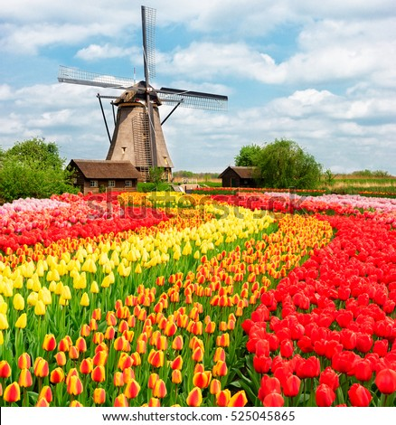Traditional Netherlands Holland Dutch Scenery One Stock Photo