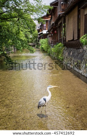 Traditional old houses in Gion, Osaka. A crane, the Japanese symbol for happiness and longevity, stands in the river.  - stock photo