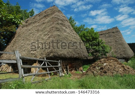Traditional Romanian rural house  with hay roof. Transylvania.