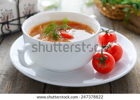 Traditional Russian cabbage soup - shchi - stock photo