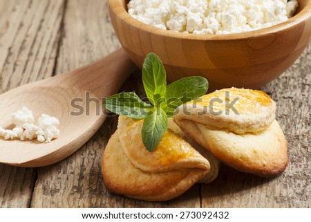 traditional Russian cuisine homemade biscuits with cheese, selective focus
