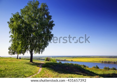 Traditional russian landscape: birch trees on the hill in front of wide Volga river watershed, Ryasan region, Russia - stock photo