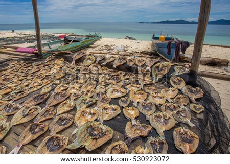 Traditional salted fish drying on racks in Gugusan Island,Semporna,Sabah,Borneo.Sea Gypsy or Bajau Laut sell their surplus catch as dried and salted fish through nearest town in Semporna,Sabah.
