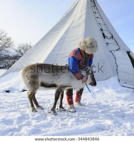 Traditional Sami reindeer-skin tents (lappish yurts) in Tromso .reindeer breeder - stock photo