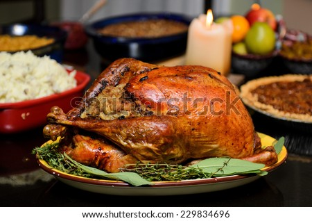 Traditional thanksgiving turkey - stock photo