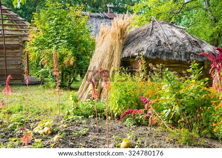 traditional ukrainian garden at fall. Straw bunches are ready for roof covering.