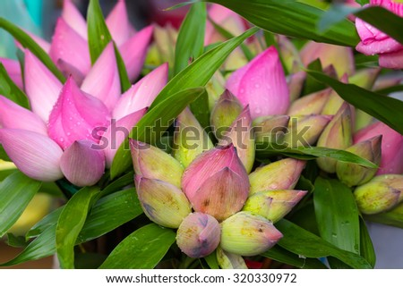 Traditional Vietnamese lotus buds offerings bunches in a shop - stock photo