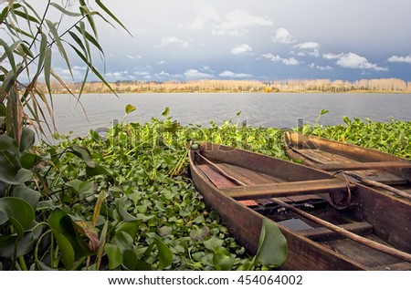 Traditional wooden fishing boats of Pateira de Fermentelos in Portugal before rain. This is a reserve, reach in birds (ducks, etc...) - stock photo
