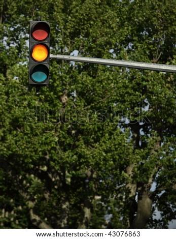 Traffic lights - orange light is on (against lovely tree greenery) - stock photo