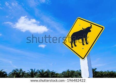 Traffic warning sign - buffalo cross road