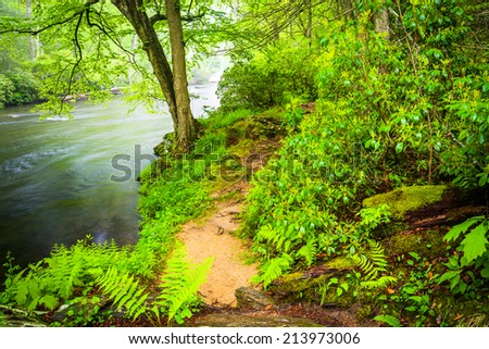 Trail along the Gunpowder River, near Prettyboy Reservoir in Baltimore County, Maryland. - stock photo