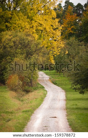 Trail leading into the forest in south germany - stock photo
