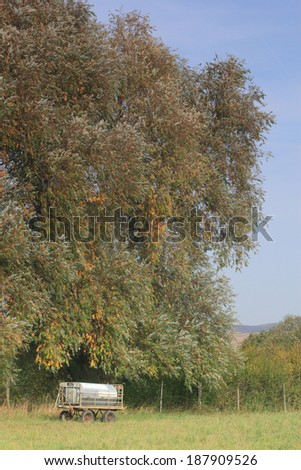 trailer based cattle watering tank under a willow tree - stock photo