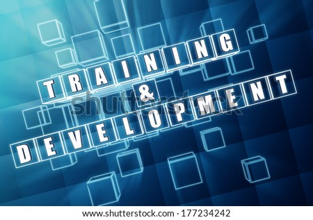 training and development - text in 3d blue glass cubes with white letters, business education concept - stock photo