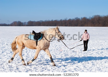 Training of the horse in winter - stock photo