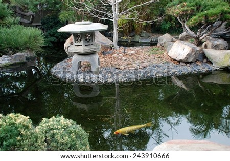 tranquil pond - stock photo