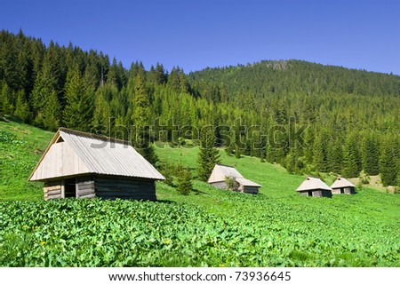 Tranquil scenery in the Tatra Mountains in Poland, simple wooden huts on the meadow - stock photo