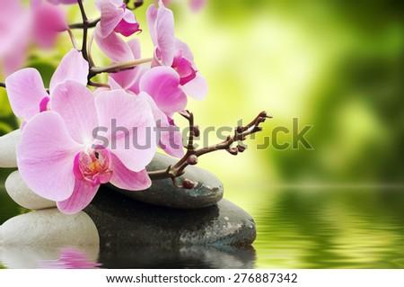 tranquil spa scene - stock photo
