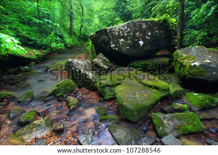 Tranquil stream cuts a deep gorge through the lush forests of northern Alabama - stock photo